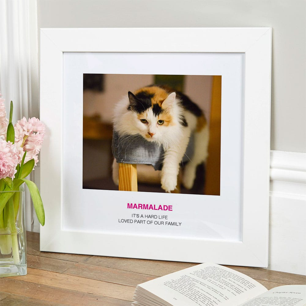 dog photo portrait gift